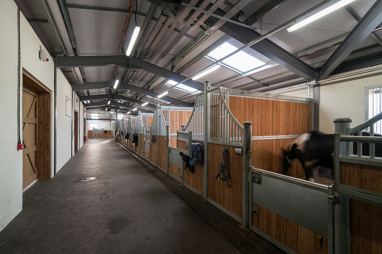 Thompson house equestrian centre wcp associates for Fixed price house build